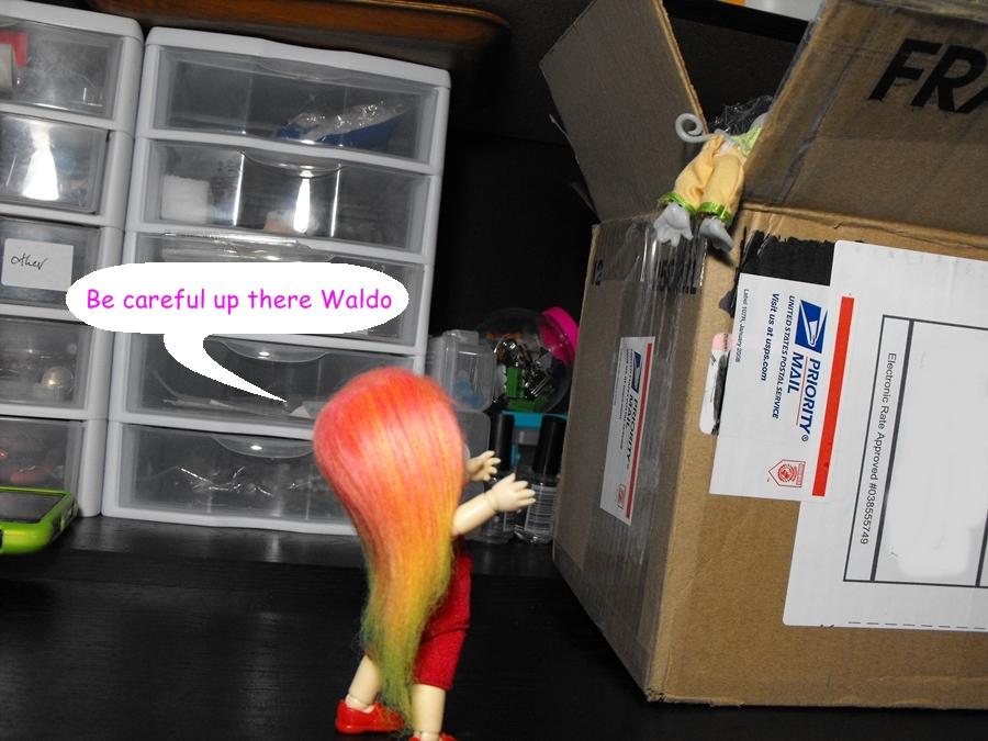 Surprise package Pmbx01-004
