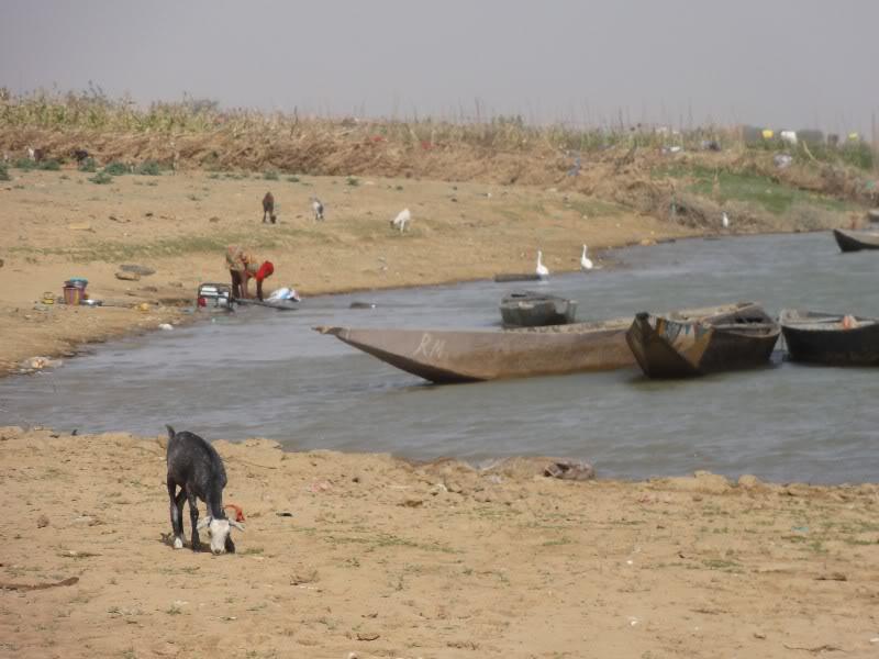 Memórias de África Central 2012 - 19Janeiro-02Fevereiro DSC01252