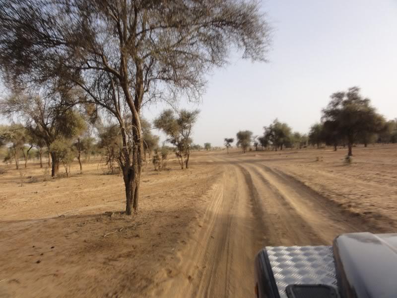 Memórias de África Central 2012 - 19Janeiro-02Fevereiro DSC01293