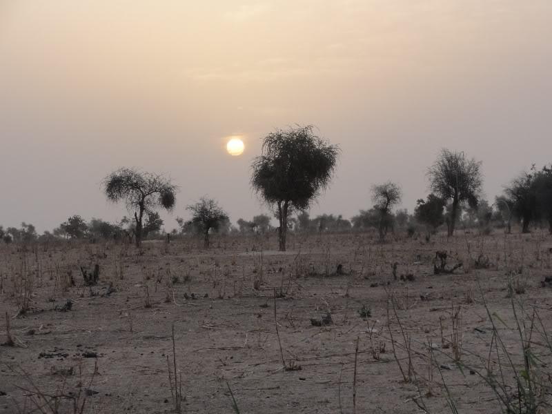 Memórias de África Central 2012 - 19Janeiro-02Fevereiro DSC01321