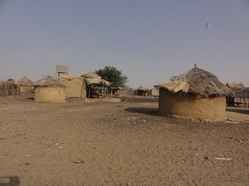 Memórias de África Central 2012 - 19Janeiro-02Fevereiro DSC01330
