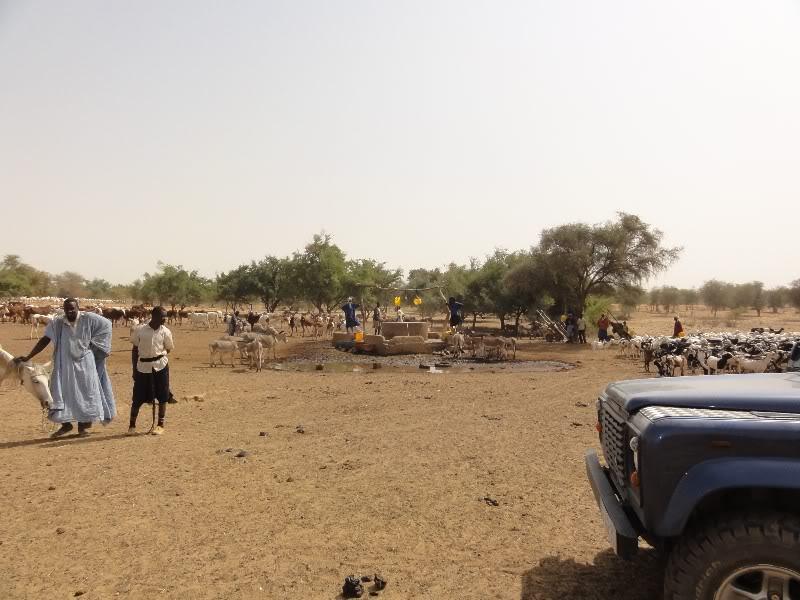 Memórias de África Central 2012 - 19Janeiro-02Fevereiro DSC01341