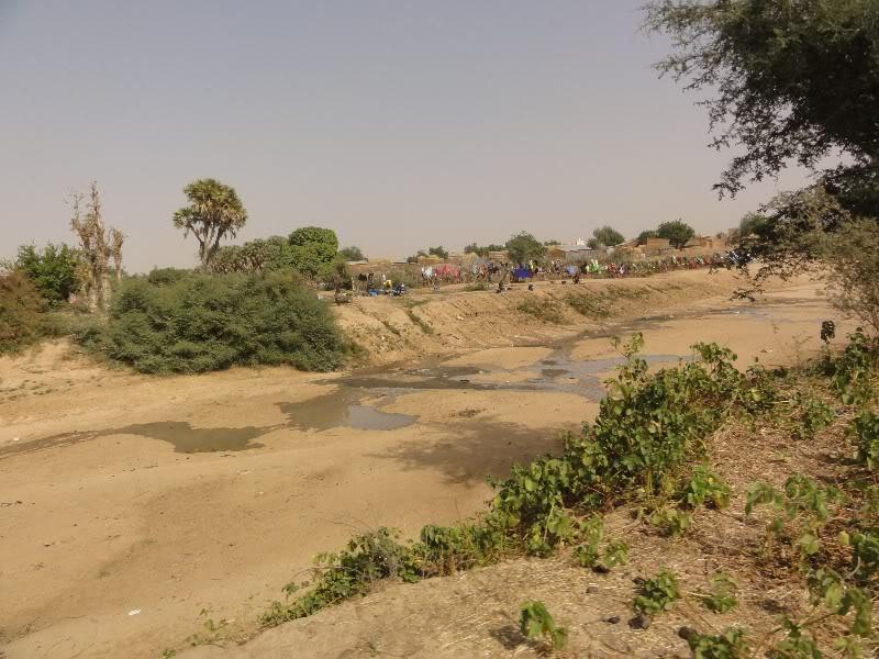 Memórias de África Central 2012 - 19Janeiro-02Fevereiro DSC01343