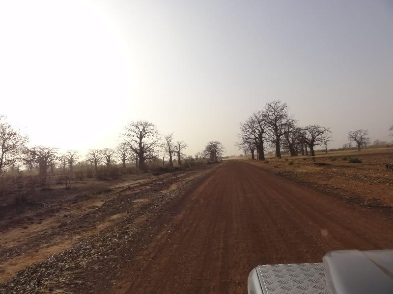 Memórias de África Central 2012 - 19Janeiro-02Fevereiro DSC01356