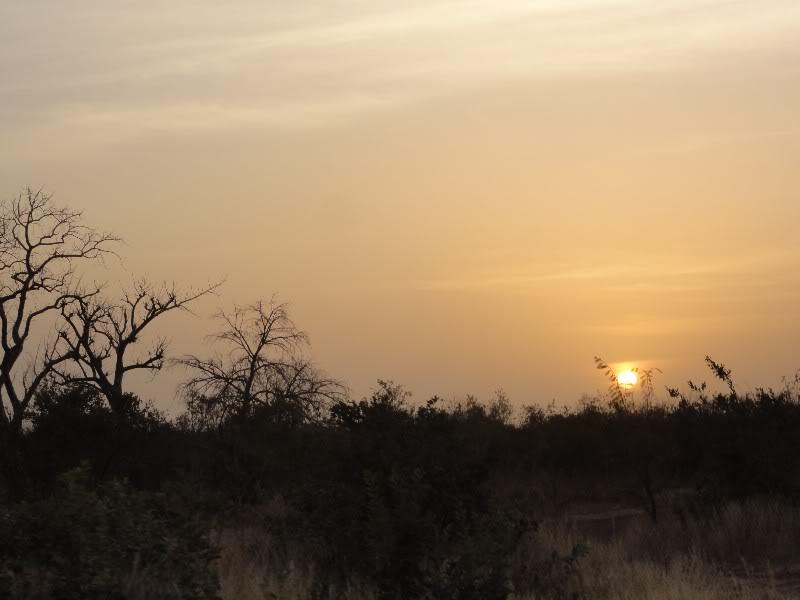 Memórias de África Central 2012 - 19Janeiro-02Fevereiro DSC01369