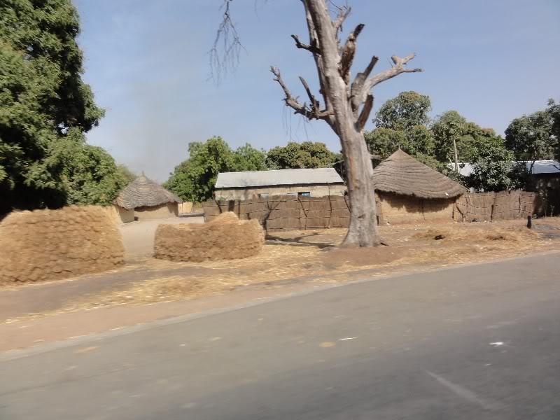 Memórias de África Central 2012 - 19Janeiro-02Fevereiro DSC01385