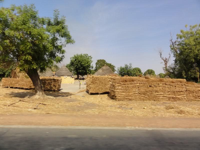 Memórias de África Central 2012 - 19Janeiro-02Fevereiro DSC01388