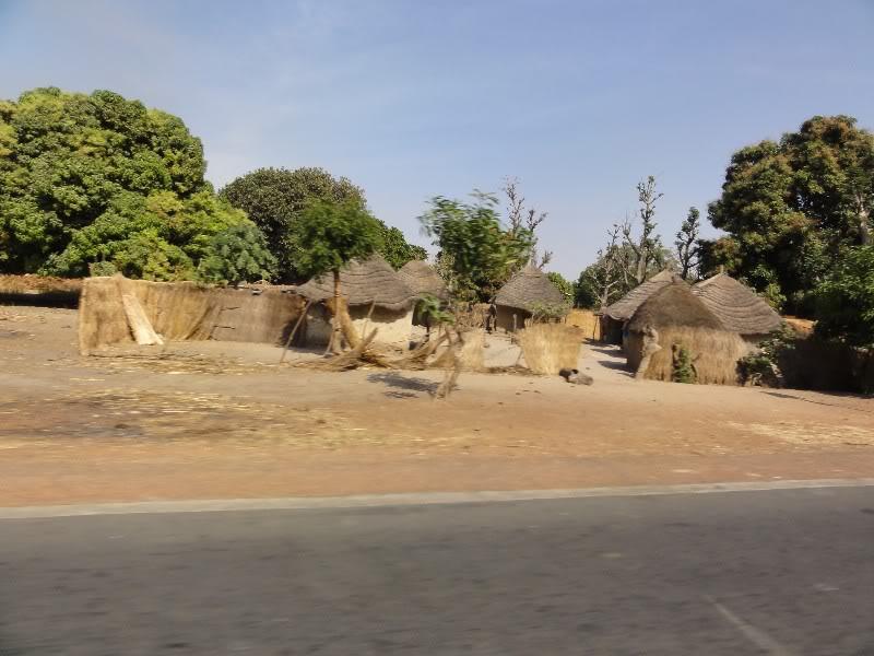 Memórias de África Central 2012 - 19Janeiro-02Fevereiro DSC01390
