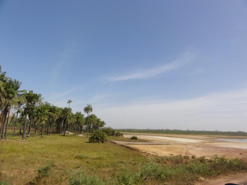Memórias de África Central 2012 - 19Janeiro-02Fevereiro DSC01415