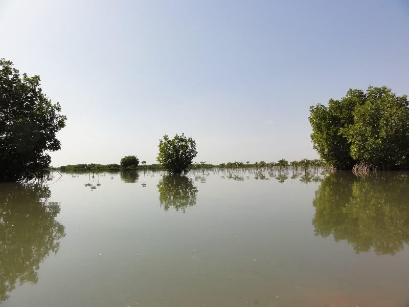 Memórias de África Central 2012 - 19Janeiro-02Fevereiro DSC01478