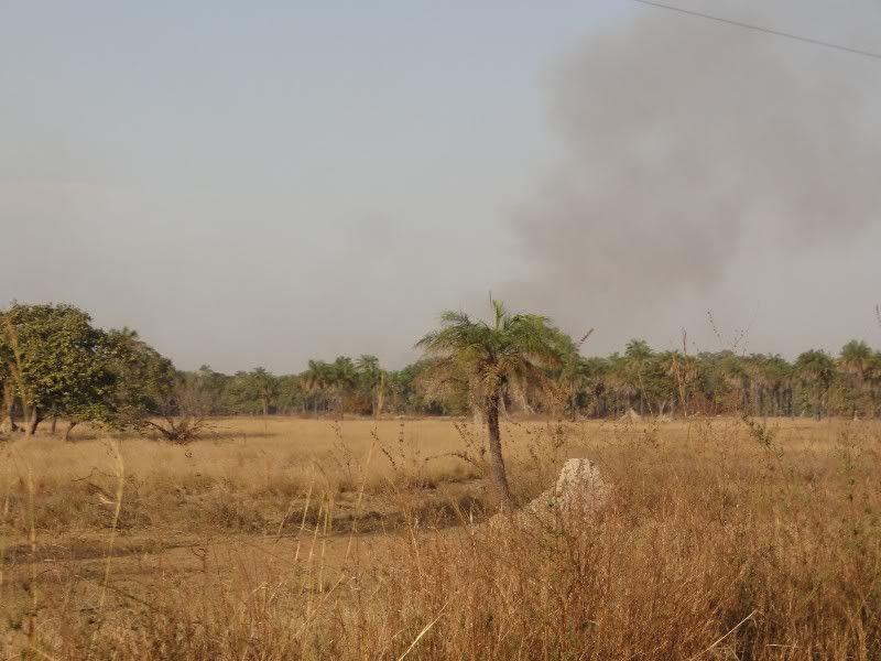Memórias de África Central 2012 - 19Janeiro-02Fevereiro DSC01500