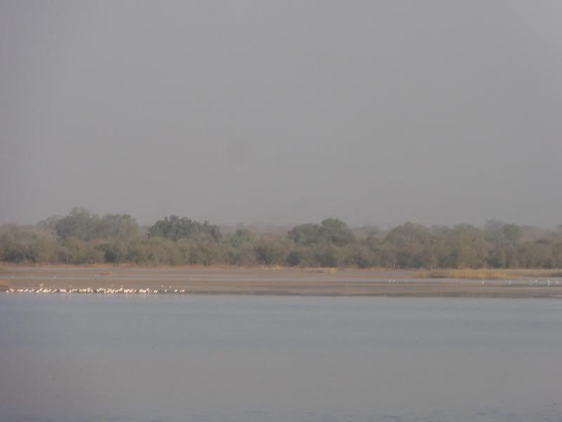 Memórias de África Central 2012 - 19Janeiro-02Fevereiro DSC01502