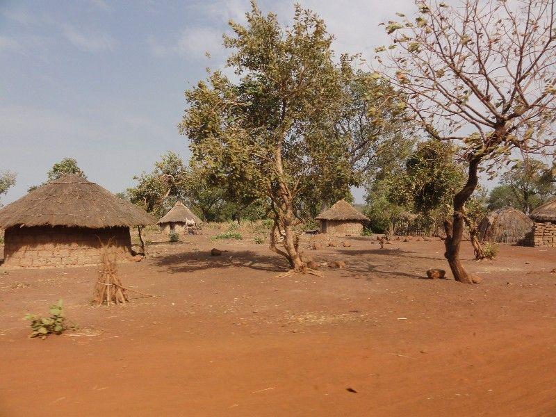 Memórias de África Central 2012 - 19Janeiro-02Fevereiro DSC01564