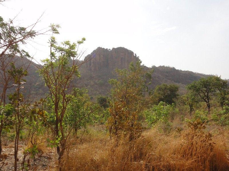 Memórias de África Central 2012 - 19Janeiro-02Fevereiro DSC01567
