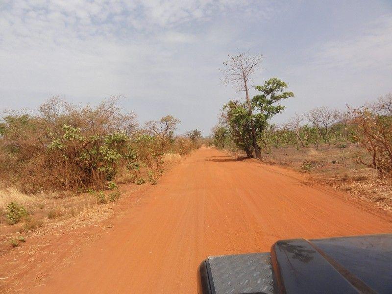 Memórias de África Central 2012 - 19Janeiro-02Fevereiro DSC01583