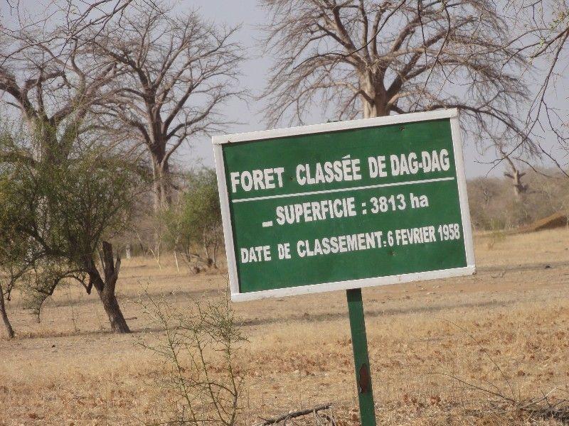 Memórias de África Central 2012 - 19Janeiro-02Fevereiro DSC01637