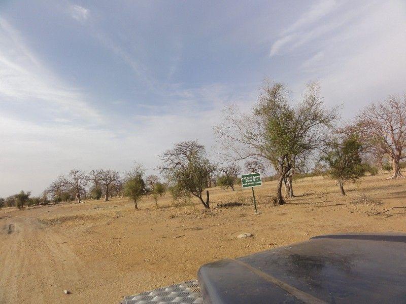 Memórias de África Central 2012 - 19Janeiro-02Fevereiro DSC01638
