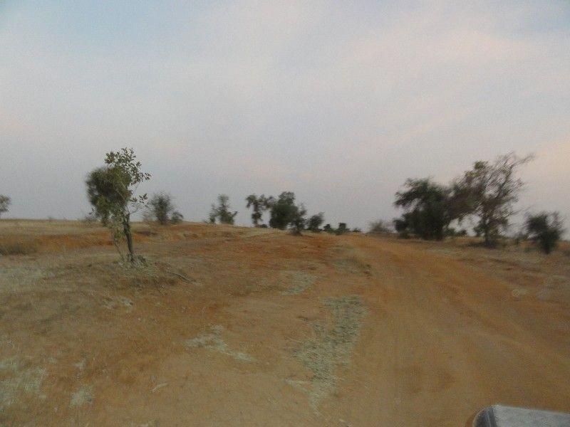 Memórias de África Central 2012 - 19Janeiro-02Fevereiro DSC01643
