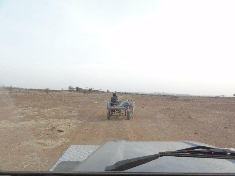 Memórias de África Central 2012 - 19Janeiro-02Fevereiro DSC01648