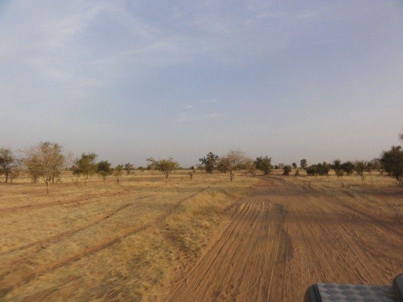 Memórias de África Central 2012 - 19Janeiro-02Fevereiro DSC01652