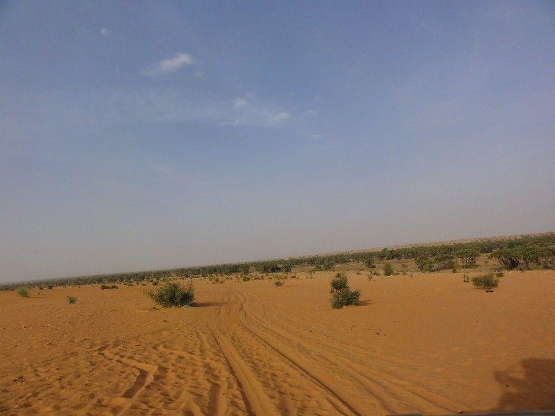 Memórias de África Central 2012 - 19Janeiro-02Fevereiro DSC01655
