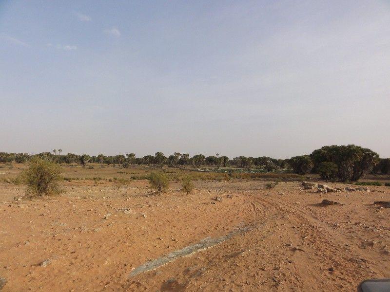 Memórias de África Central 2012 - 19Janeiro-02Fevereiro DSC01656