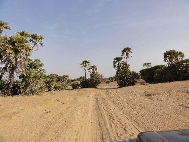 Memórias de África Central 2012 - 19Janeiro-02Fevereiro DSC01657