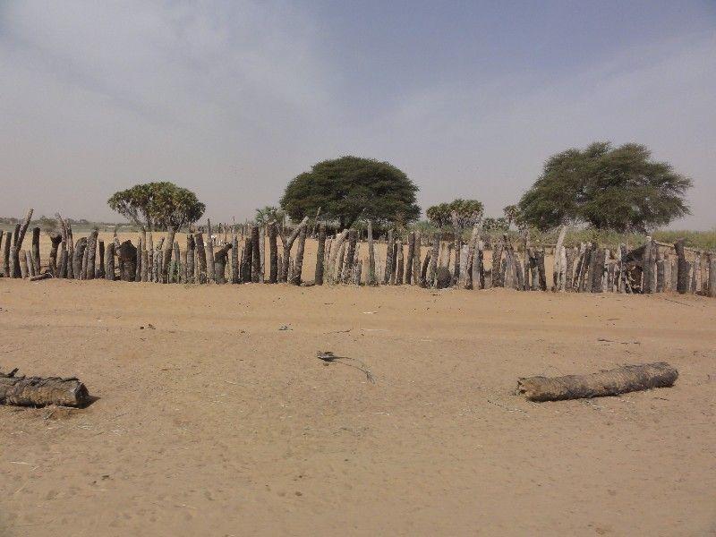 Memórias de África Central 2012 - 19Janeiro-02Fevereiro DSC01668