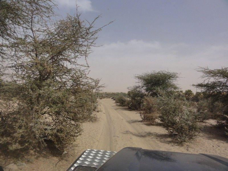 Memórias de África Central 2012 - 19Janeiro-02Fevereiro DSC01675
