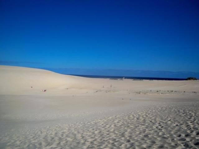 Canary Islands, Fuerteventura, Corralejo 100_0888