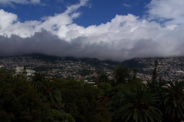 Madeira, Funchal 100_0583