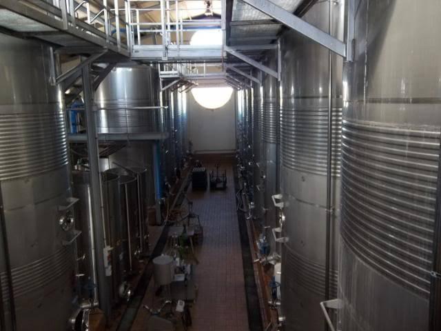 Binnisalem José L Ferrer vineyard tour 100_0782