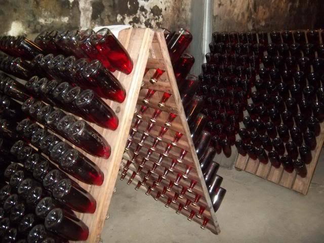 Binnisalem José L Ferrer vineyard tour 100_0790