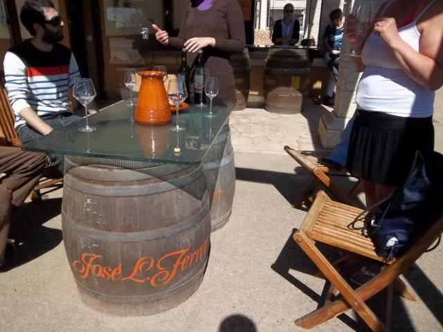 Binnisalem José L Ferrer vineyard tour 100_0792