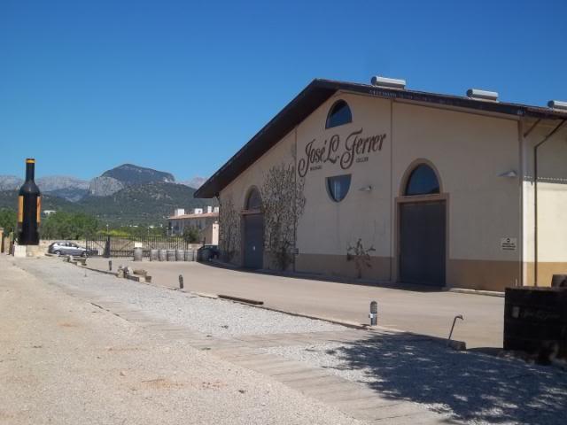 Binnisalem José L Ferrer vineyard tour 100_0800