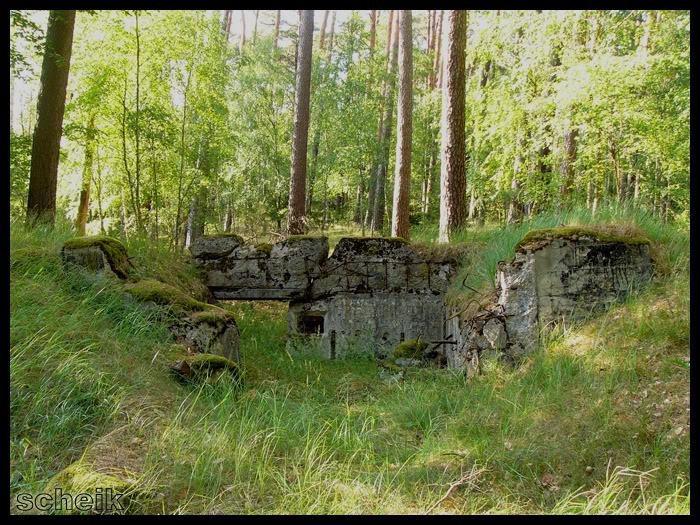 Rok 1934 w fortyfikacji niemieckiej Dpn02