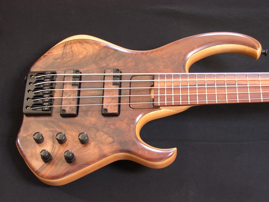 Skjold basses DSCN2582