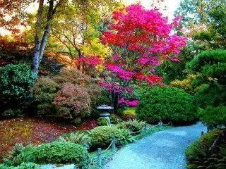 Jarin Lirit La Font de Fry Colores-jardin-1