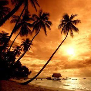 Playa (Dia y Noche) Playas