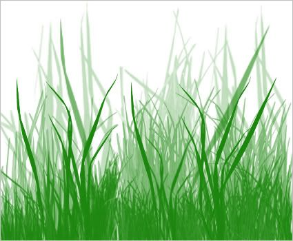 GRASS POKEMON GRASS