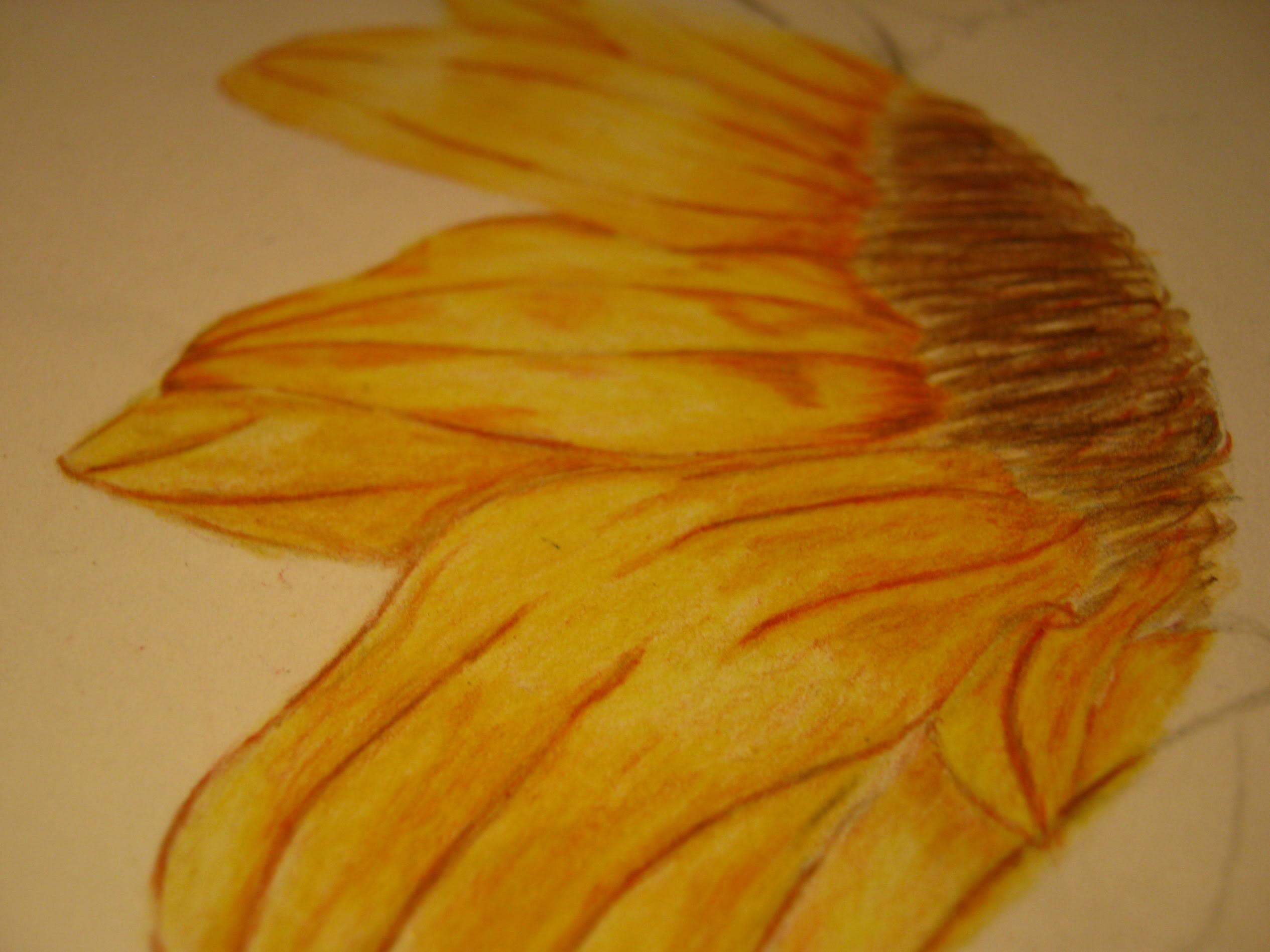 Dibujos, Diseños... otras cosas XD IMG_0895