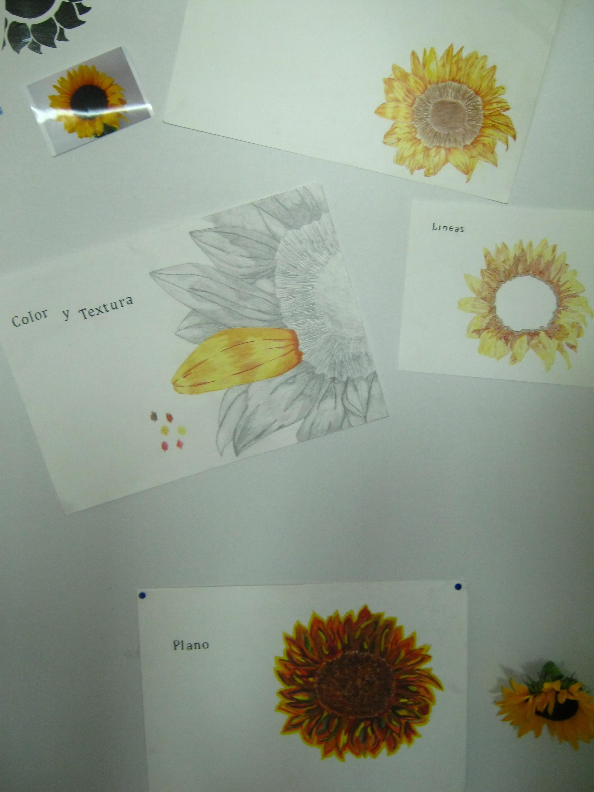 Dibujos, Diseños... otras cosas XD IMG_0924