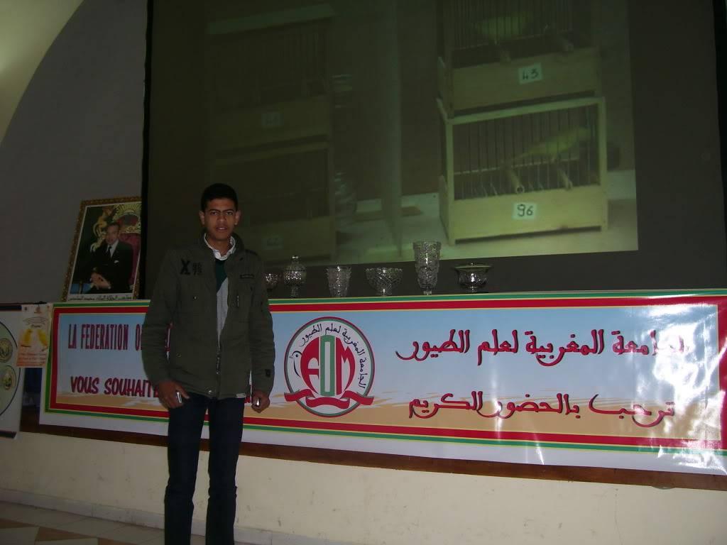les photos de concour de malinois Marrakech 100_2814