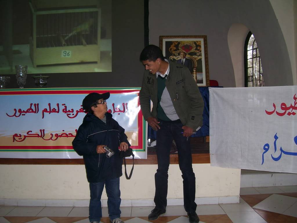 les photos de concour de malinois Marrakech 100_2815