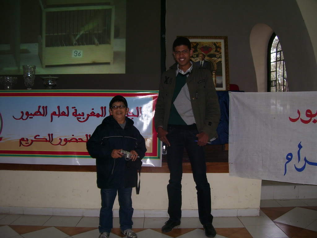 les photos de concour de malinois Marrakech 100_2816