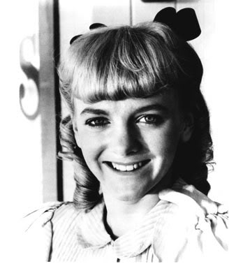 LITTLE HOUSE ON THE PRAIRIE SET Happynel