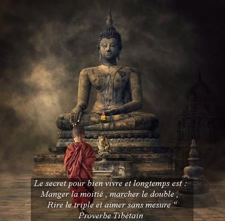 Bouddha - Page 3 11174935_463937647097053_2425742831304591884_n
