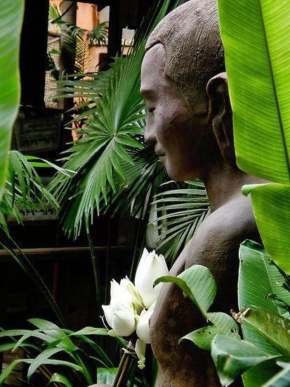 Bouddha - Page 2 Tumblr_l6pmy82xRX1qb0f19o1_500