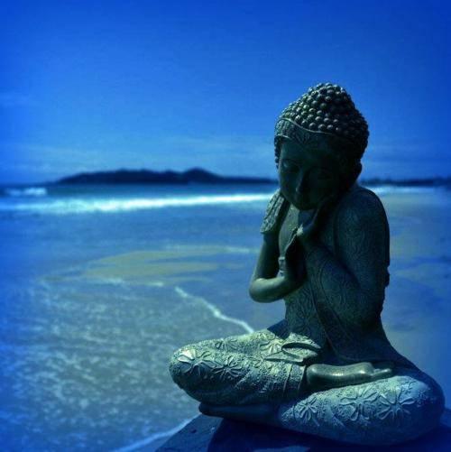 Bouddha - Page 3 Tumblr_lbr0jnHRDJ1qavukro2_r1_500
