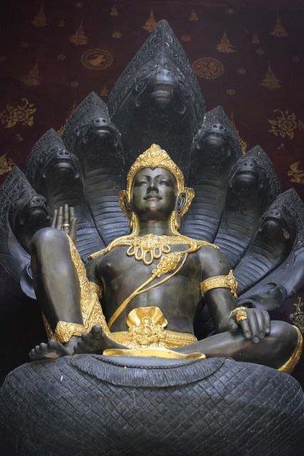 Bouddha - Page 4 Tumblr_m8t09yNk5y1qijp5no1_500